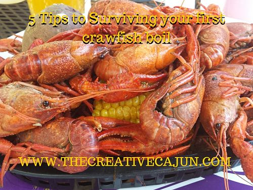 5 Tips to Surviving your first crawfish boil (1)_opt